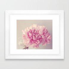 Dreamy Carnations  Framed Art Print