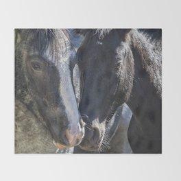 Bachelor Stallions - Pryor Mustangs Throw Blanket