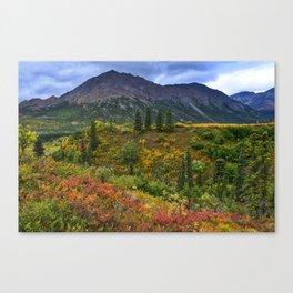 Denali Park in Autumn Canvas Print