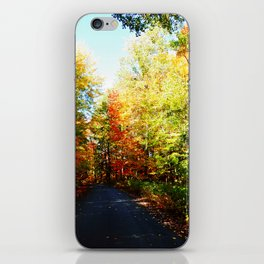 Into the Fall Forest iPhone Skin