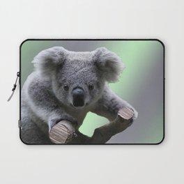 Koala Bear Laptop Sleeve