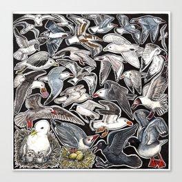 Sea gulls for bird lovers Canvas Print