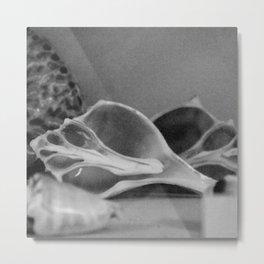 half shell Metal Print