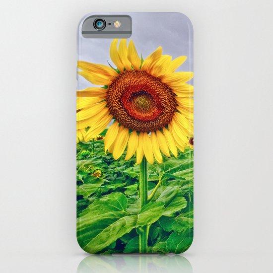 Enchanted Sunflowers iPhone & iPod Case
