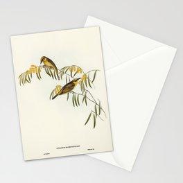 Vintage birds on vines Stationery Cards