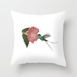 Trumpet Flower & Hummingbird Throw Pillow