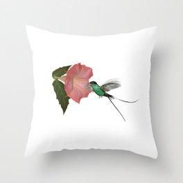 Trumpet Flower & Hummingbird Throw Pillow