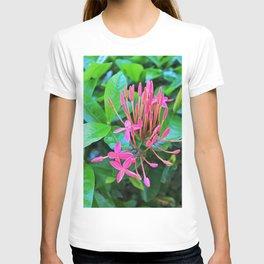 It's Pink T-shirt