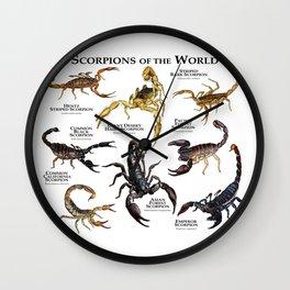 Scorpions of the World Wall Clock