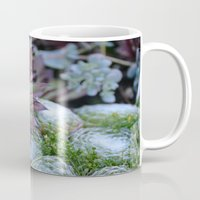 succulent Mugs featuring Succulent by Jay Pederson Photography