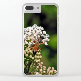 Wasp 1797 Clear iPhone Case