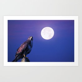 Bird of prey in the full moon Art Print