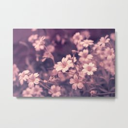 Closeup of delicate white flowers. Nature Photography. Metal Print
