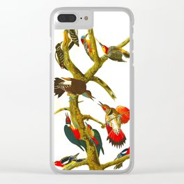 Hairy Woodpecker Clear iPhone Case