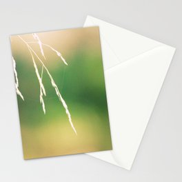 Nidi di ragni Stationery Cards