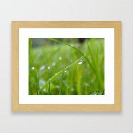 herbe folle Framed Art Print