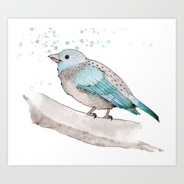fat little blue bird  Art Print