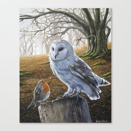 The Owl and the Robin - Acrylic Painting Canvas Print