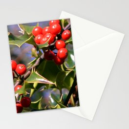 Holly Berries Stationery Cards
