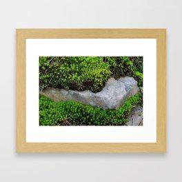 Vibrant Moss Framed Art Print