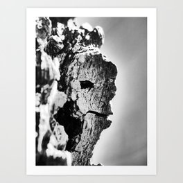 bark face Art Print