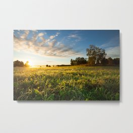 Serene landscape photo of meadow at sunrise Metal Print