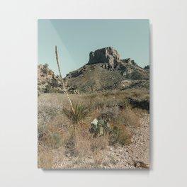 Rock Formation Landscape in Chisos Basin Metal Print