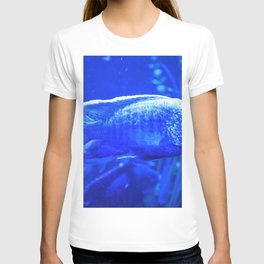 Deep Blue Fish T-shirt