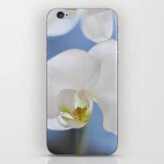 White Phalaenopsis iPhone & iPod Skin