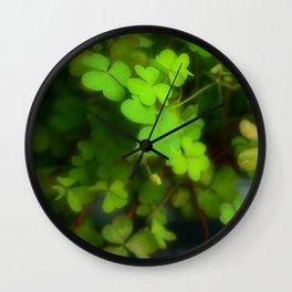 Oxalis Fontana Wall Clock