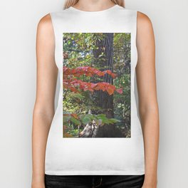 The Divinity of Nature Biker Tank