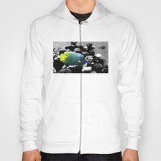 Tropical Fish Hoody