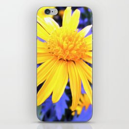 Atomic Daisy iPhone Skin