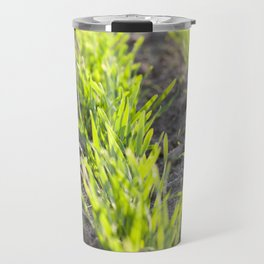green sprouts of wheat Travel Mug