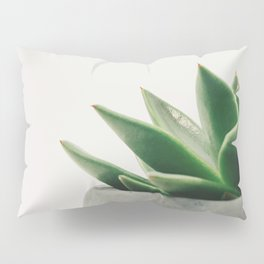 Minimal Cactus - Cacti Photography Pillow Sham