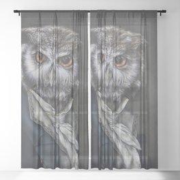 Professor Dapper Sheer Curtain