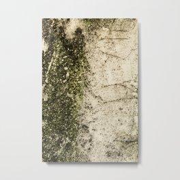 Texture No.2933 Metal Print
