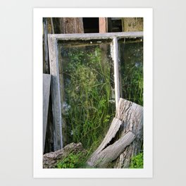 Window Framed Flora Art Print