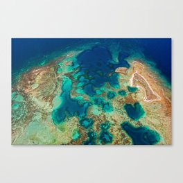 Colours of the Reef Canvas Print