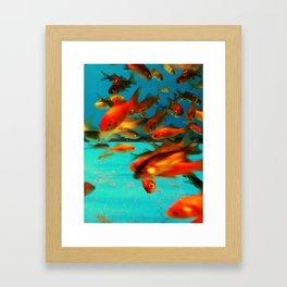 fish #2 Framed Art Print