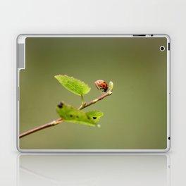 Ladybug Macrosphere Laptop & iPad Skin