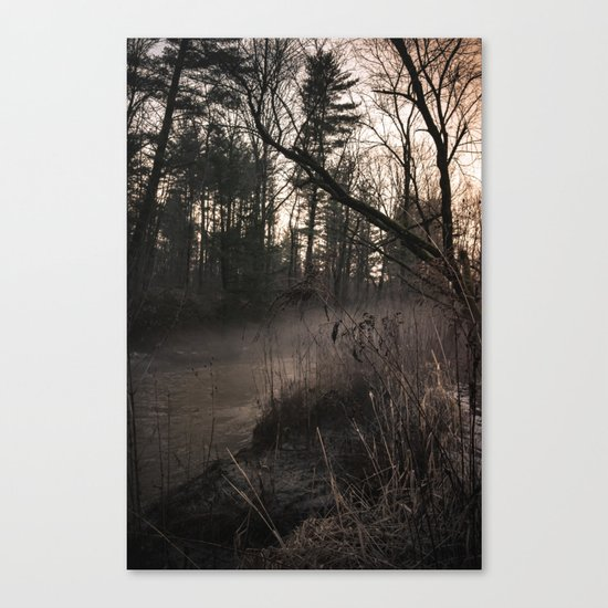 Winter's Hold Canvas Print