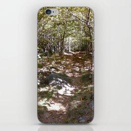 Wood's iPhone Skin