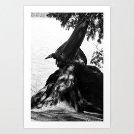 Star Lake Twist Art Print