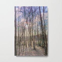 Sutton Park Metal Print