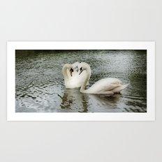 Dreaming of Swans Art Print