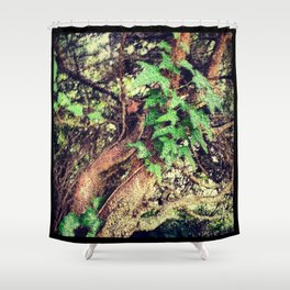 Tangle of Gnarly Branches & Ivy Shower Curtain