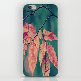 Yesterday autumn leaves in botanic garden iPhone Skin