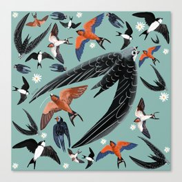 Swallows Martins and Swift pattern Turquoise Canvas Print