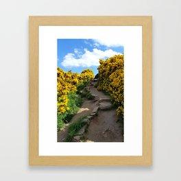 Edinburgh Scotland Path Framed Art Print